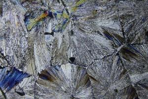 zdjecia-mikroskopowe-fotografia-mikroskopowa-26