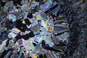 zdjecia-mikroskopowe-fotografia-mikroskopowa-38